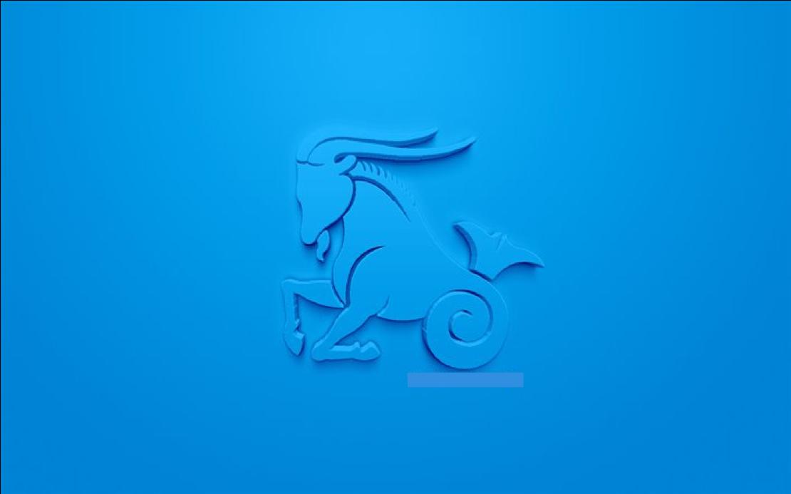 signe astrologique capricorne idées cadeaux